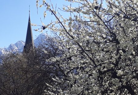Predigt Ostersonntag 2019  – Österliche Überraschungen