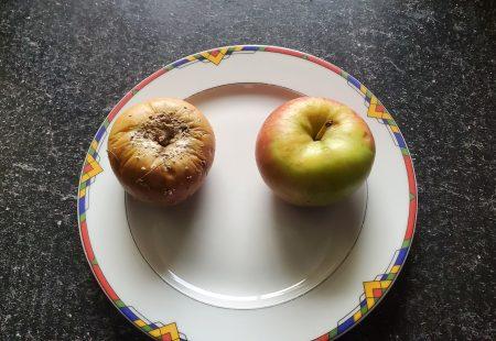 Predigt Ein fauler Apfel und die Pharisäer